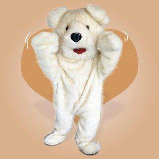 ชุดหมีขาว