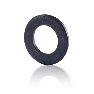 แหวนอีแปะ ASTM F436