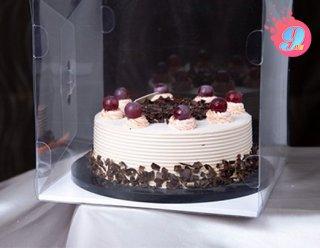 กล่องเค้ก 2 ปอนด์พลาสติก 25x25x24 cm. (พร้อมฐาน)