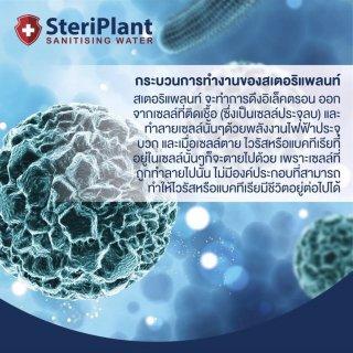 บริการพ่นยา SteriPlant Sanitising ฆ่าเชื้อไวรัส