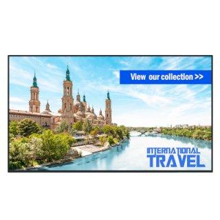 65 นิ้ว FULL-HD LCD Display (LED Outdoor) TH-65SF2