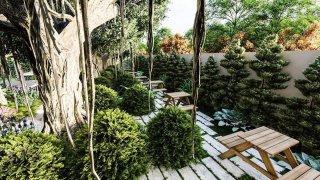รับจัดสวน ออกแบบสวน